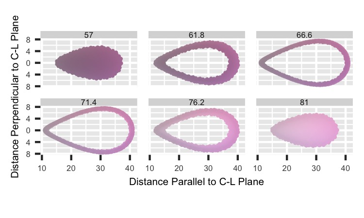 HCL: Parallel-Perpendicular Distances by L cuts